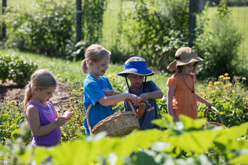 Summer Nature and Farm Camp 2019 | Kimberton Waldorf School
