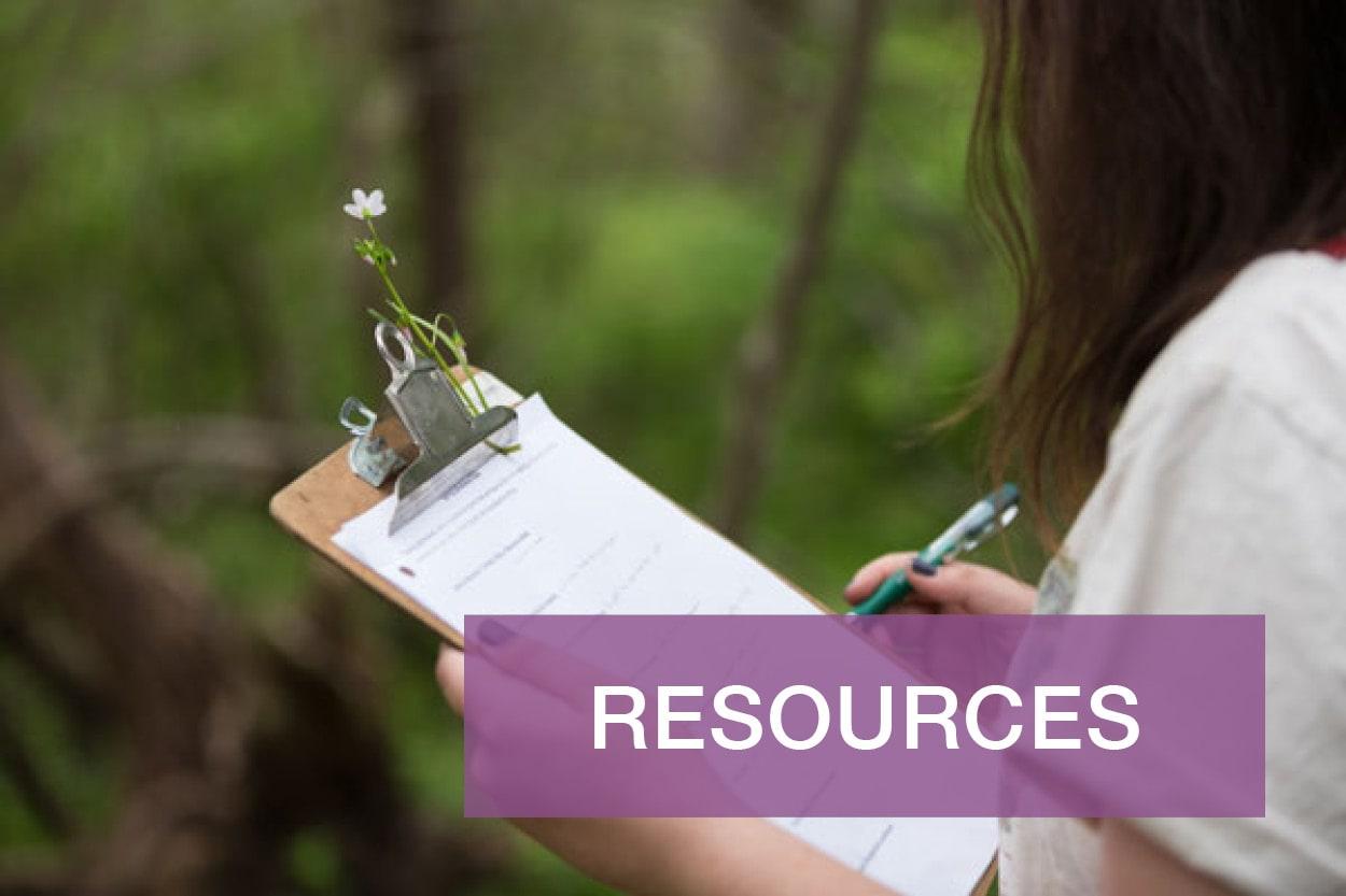 Forms & Handbooks